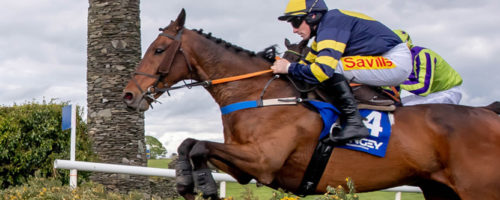 Winner Announced of Mongey La Touche Cup at Punchestown